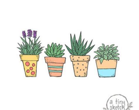 Peradeniya botanical garden essay